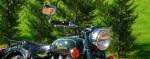 Royal Enfield - Chrome Napoleon Bar End Mirror